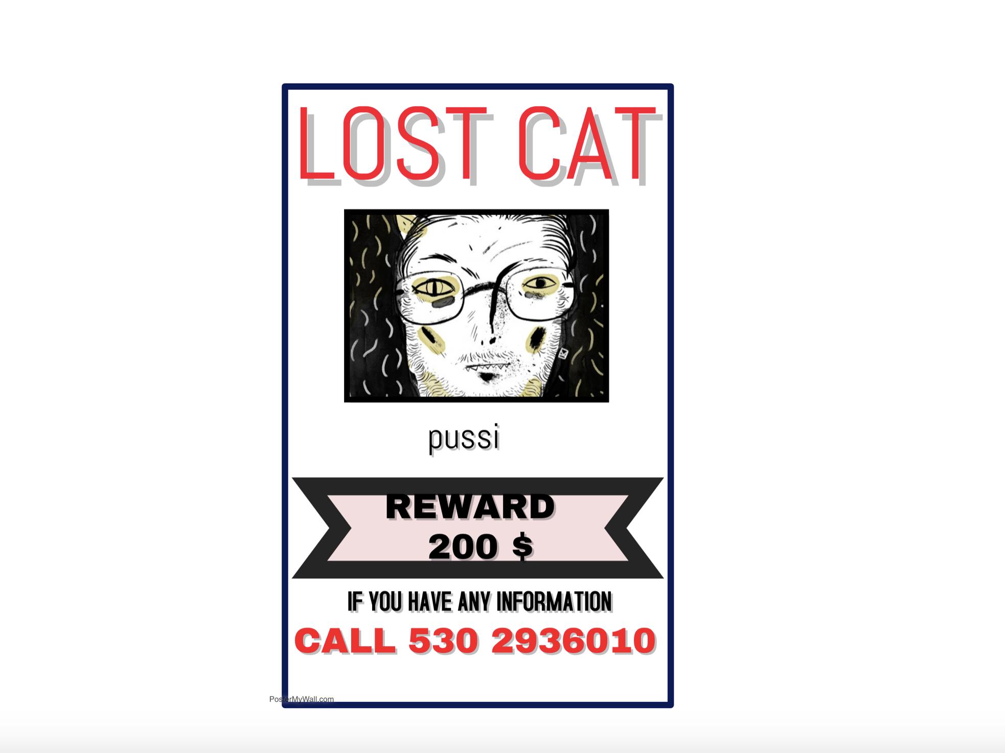 LOST CAT : PLEASE CALL