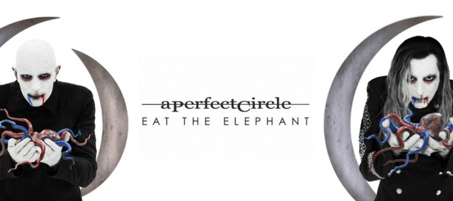 Eat the Elephant, Yeni Dünya Düzeni ve Beşerin Durumu